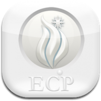 Epiphany Certification Courses